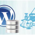Cómo la base de datos puede estar mejor para WordPress