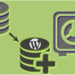 Por qué hacer una copia de seguridad antes de lanzar su página WordPress
