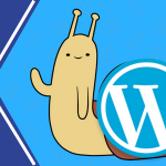 ¿Cuántos plugins en WordPress se considera demasiados?